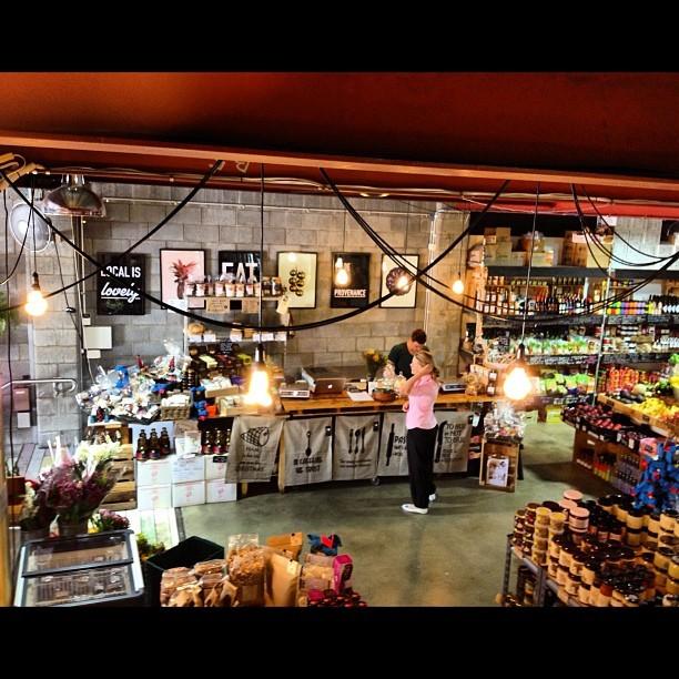 Newstead Perks – Brisbane's Inner Trendy City