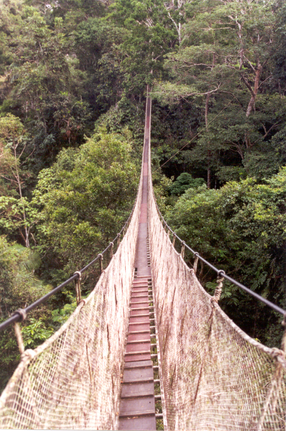 inca rope bridge - photo #22